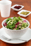 Salada verde fresca Foto de Stock
