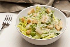 Salada verde fresca de Caeser Imagens de Stock Royalty Free