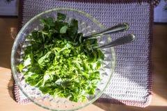 Salada verde frondosa em um conceito da dieta saudável Imagem de Stock