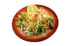 Salada verde misturada imagem de stock