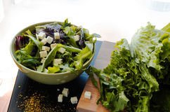 Salada verde na bacia Foto de Stock