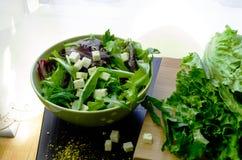 Salada verde na bacia Fotografia de Stock