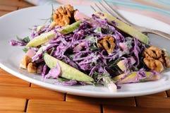 Salada vermelha da salada de repolho Imagens de Stock Royalty Free