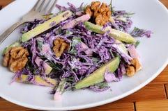 Salada vermelha da salada de repolho Fotografia de Stock Royalty Free