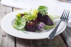 Salada vermelha fresca da beterraba de jardim foto de stock royalty free
