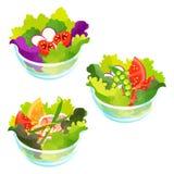 Saladas da mistura Imagens de Stock