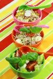Saladas diferentes no bufete Imagens de Stock Royalty Free