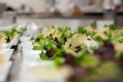 Saladas dos Tapas com cobertura do frico fotos de stock