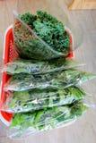 Saladas e erva gordas Fotografia de Stock