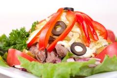 Salade épicée image libre de droits