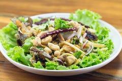 Salade épicée d'amorces croustillantes Images libres de droits