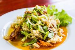 Salade épicée de porc avec des légumes Images libres de droits