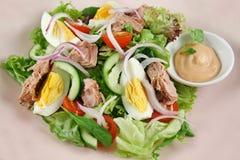 Salade 1 de thon et d'oeufs images libres de droits