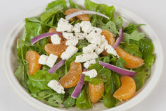 Salade royalty-vrije stock foto