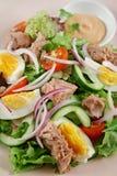 Salade 2 de thon et d'oeufs Images libres de droits
