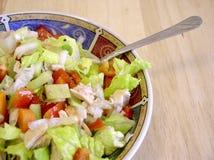 Salade 2 van de tonijn Royalty-vrije Stock Afbeeldingen