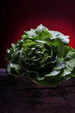 Salade Stock Image