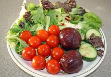Salade Royalty-vrije Stock Fotografie