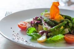 Salade appétissante Photos libres de droits