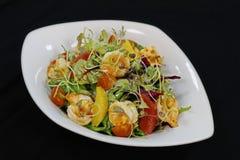 Salade asiatique de crevettes de style avec les agrumes et la laitue images stock