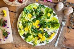 Salade avec de la laitue et les plantes comestibles sauvages, vue supérieure Photographie stock libre de droits