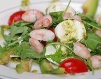 Salade avec des crevettes Images libres de droits