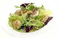 Salade avec des fruits de mer Photographie stock