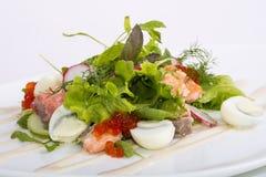 Salade avec des fruits de mer Photo libre de droits
