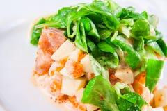 Salade avec des fruits de mer et des épinards Images stock