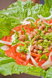 Salade avec des haricots image libre de droits