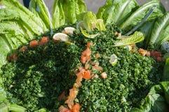 Salade avec des légumes et des herbes Photo libre de droits