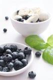 Salade avec des myrtilles et des oeufs de caille Photographie stock libre de droits