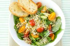 Salade avec des pousses Photographie stock