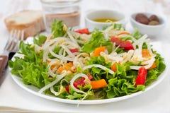 Salade avec des pousses d'haricot Photographie stock libre de droits
