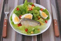 Salade avec des sardines Image libre de droits