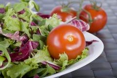 Salade avec des tomates Image libre de droits
