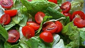 Salade avec des tomates Photographie stock