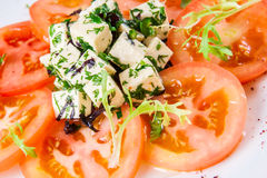 Salade avec des tomates, fromage, herbes Image libre de droits