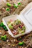 Salade avec des tranches de viande et des un bon nombre de légumes frais Photos stock