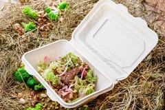 Salade avec des tranches de viande et des un bon nombre de légumes frais Image stock