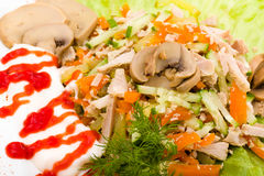 Salade avec des verts assortis, porc frit, carottes Photos stock