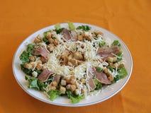 Salade avec du fromage Images libres de droits