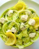 Salade avec du fromage de chèvre Image libre de droits