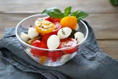 Salade avec du fromage et des tomates dans une cuvette Image libre de droits