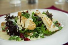 Salade avec du fromage et le yaourt de chèvres Images stock