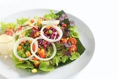 Salade avec du fromage et les légumes frais Photographie stock