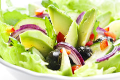 Salade avec l'avocat Photo stock