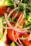 Salade avec la ciboulette 3 Images libres de droits