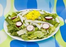 Salade avec la fleur jaune Photographie stock