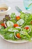 Salade avec la rectification de sésame photographie stock